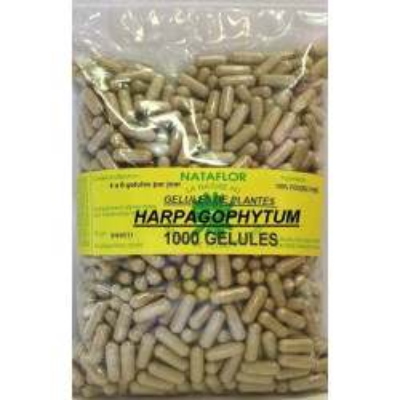 GELULES HARPAGOPHYTUM 300 mg 1000 GELULES