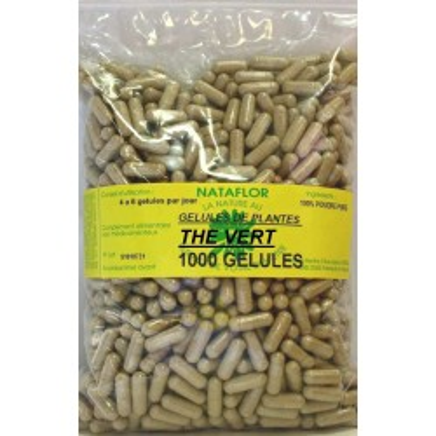 GELULES THE VERT feuille 280 mg 1000 GELULES