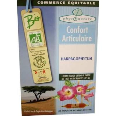 Ampoules de plantes Harpagophytum