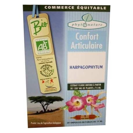 Ampoules de plantes harpagophytum.