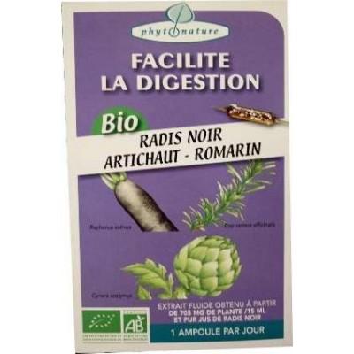 Ampoules de plantes radis noir-artichaut-romarin