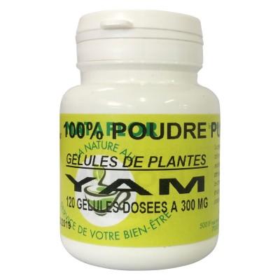 GELULES YAM 120 gélules dosées à 300 mg.