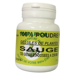 GELULES SAUGE officinale feuille 230 mg