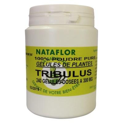 GELULES TRIBULUS 240 gélules dosées à 300mg.