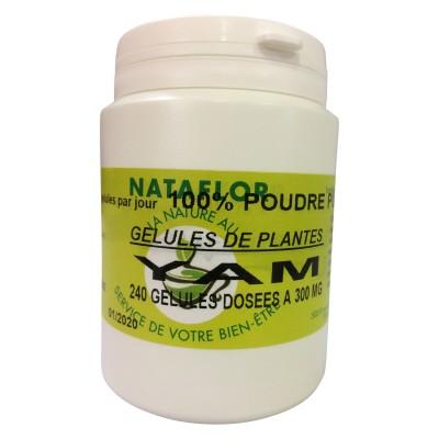 GELULES YAM 240 gélules dosées à 300 mg.