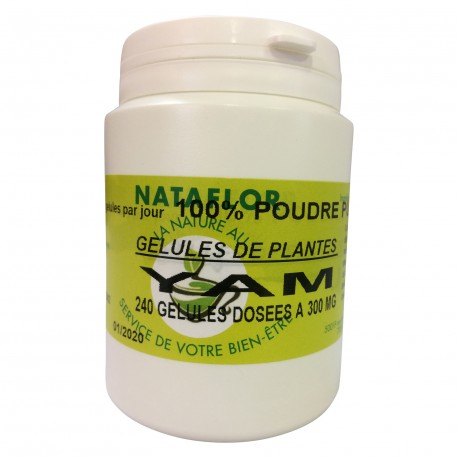 GELULES YAM 300 mg 16% diogénine