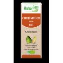 HERBALGEM CHOLESTEGEM BIO complexe cholestérol