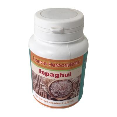 ISPAGHUL 100 gélules dosées à 220 mg