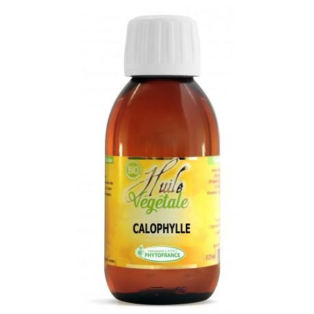 Huile végétale de Calophylle - 125 ml