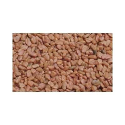 Fenugrec semence 1 Kg POUDRE Trigonella foenum-graecum