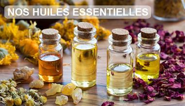 Découvrez toutes nos huiles essentielles bio et de récoltes sauvages